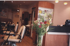 Bloor West Village Hair Salon: Curly And Fine Hair Artists